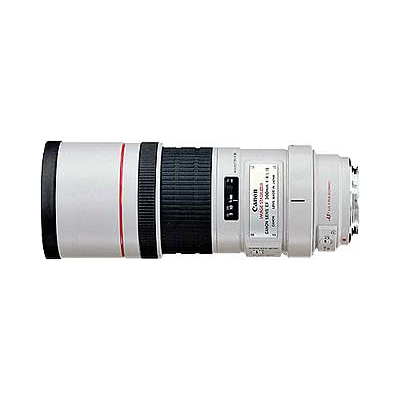 Canon EF 300mm 1/4.0 L IS USM