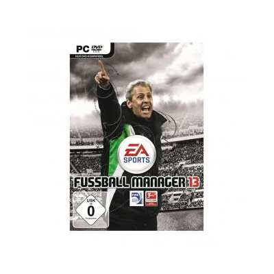 Fussball Manager 13, PC