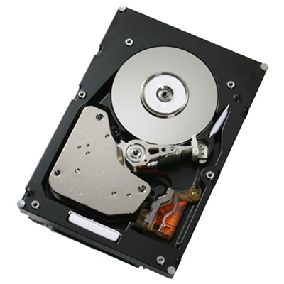 IBM Express 1TB Hot-Swap SATA II (41Y8236)
