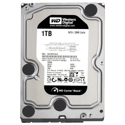 Western Digital HDD RE 1TB (WD1001FYYG)